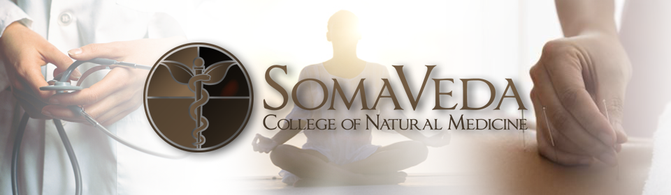 Doctor of Ayurveda General Information - SCNM