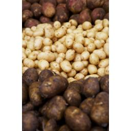 Spouting Potatoes